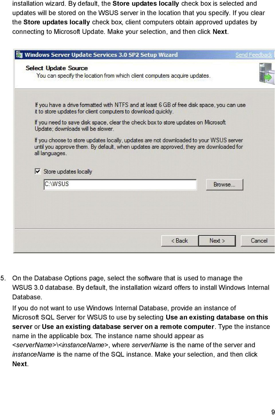 On the Database Options page, select the software that is used to manage the WSUS 3.0 database. By default, the installation wizard offers to install Windows Internal Database.
