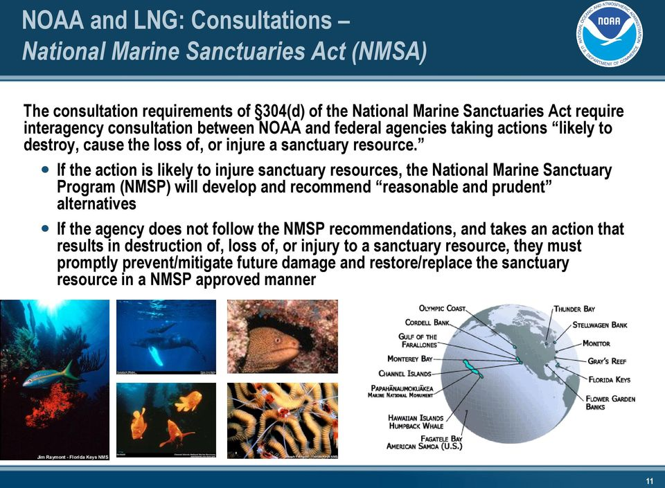 If the action is likely to injure sanctuary resources, the National Marine Sanctuary Program (NMSP) will develop and recommend reasonable and prudent alternatives If the agency does
