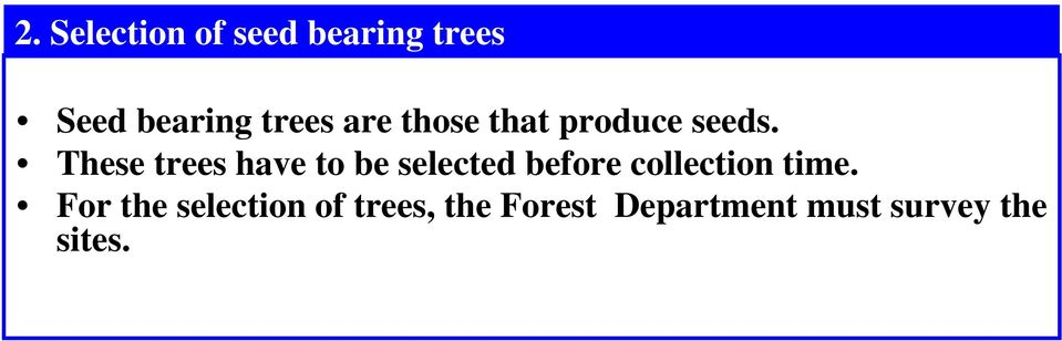 These trees have to be selected before collection