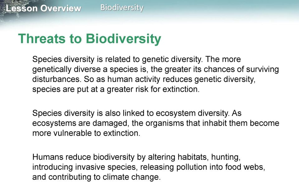 So as human activity reduces genetic diversity, species are put at a greater risk for extinction.