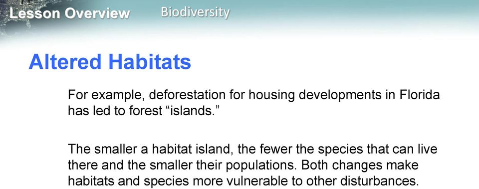 The smaller a habitat island, the fewer the species that can live there