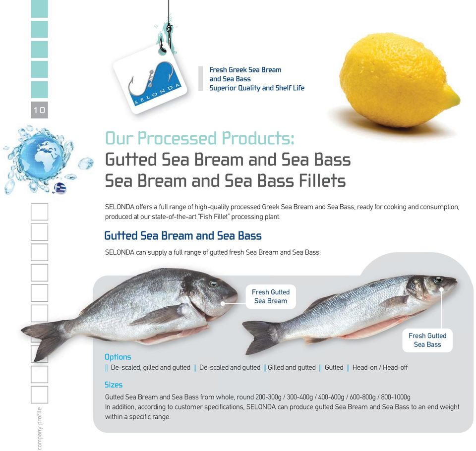 SELONDA can supply a full range of gutted fresh Sea Bream and Sea Bass: Fresh Gutted Sea Bream Options Options De-scaled, gilled and gutted De-scaled and gutted Gilled and gutted