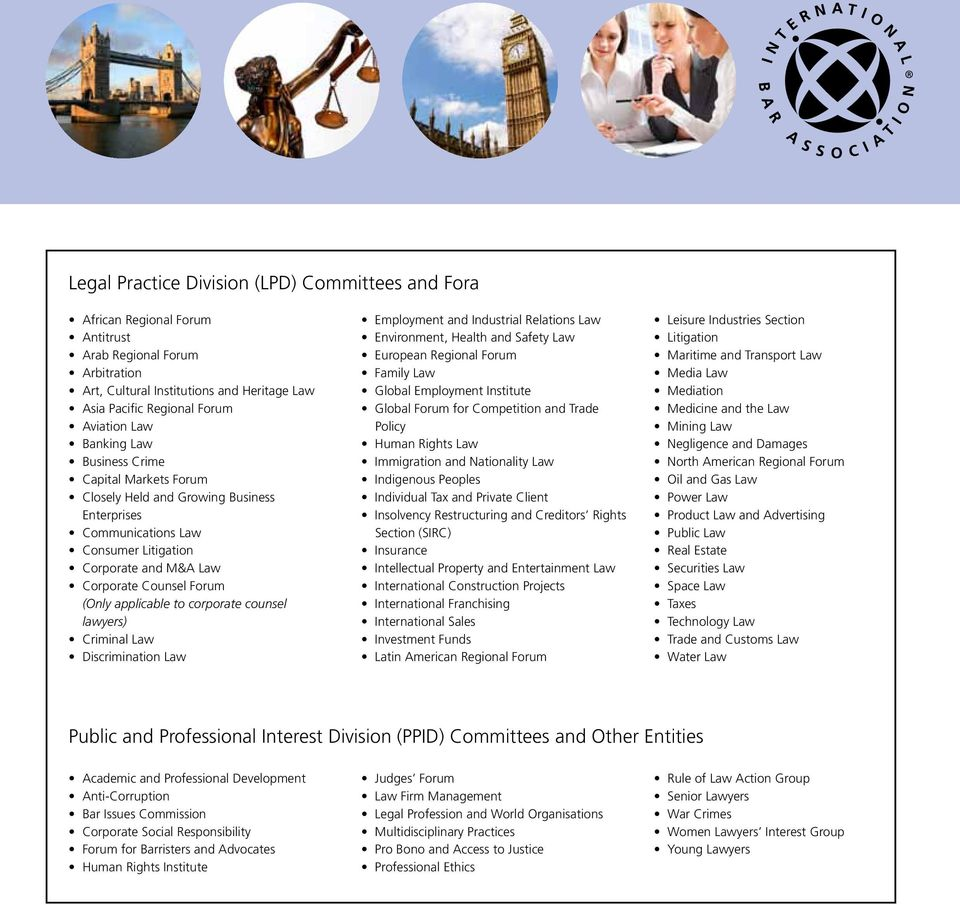 corporate counsel lawyers) Criminal Law Discrimination Law Employment and Industrial Relations Law Environment, Health and Safety Law European Regional Forum Family Law Global Employment Institute