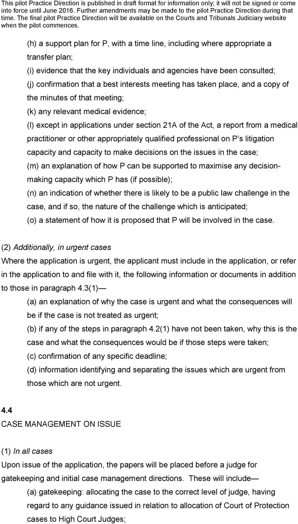 other appropriately qualified professional on P s litigation capacity and capacity to make decisions on the issues in the case; (m) an explanation of how P can be supported to maximise any