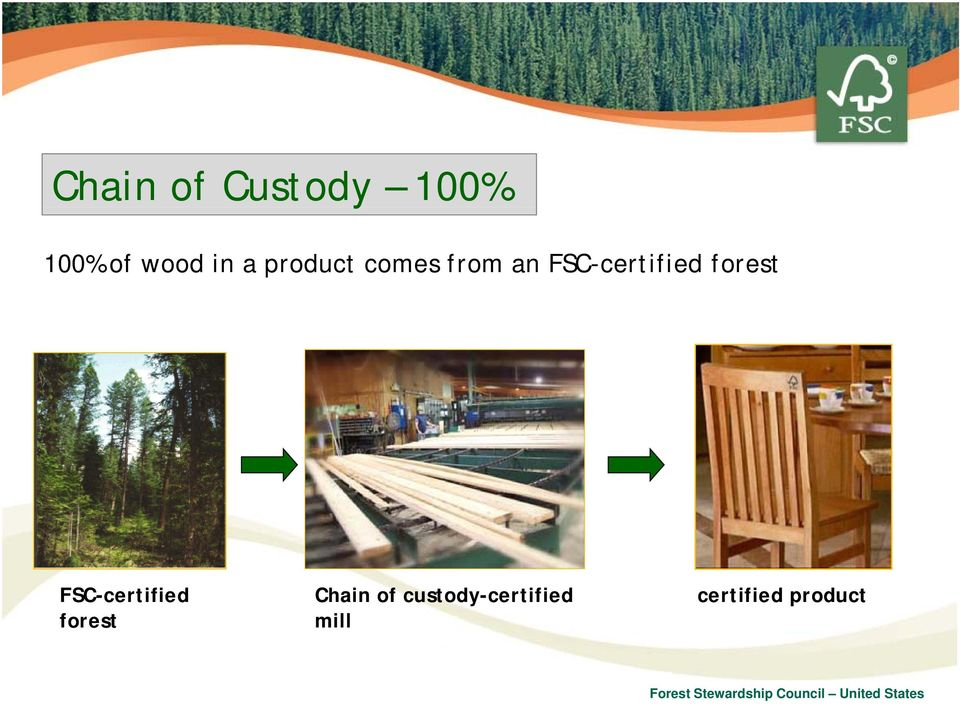 forest FSC-certified forest Chain of