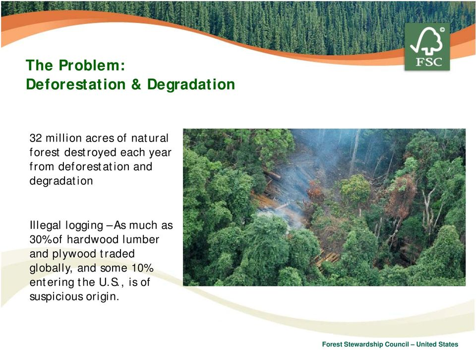 degradation Illegal logging As much as 30% of hardwood lumber and