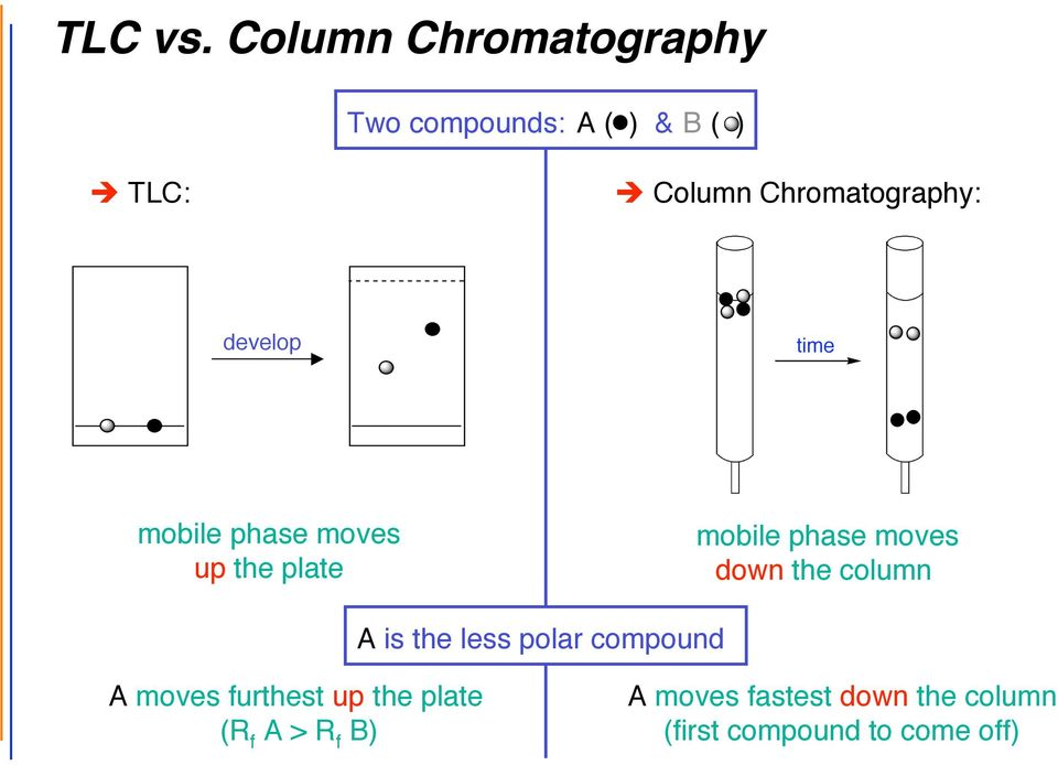 Chromatography: develop before mobile phase moves up the plate after mobile