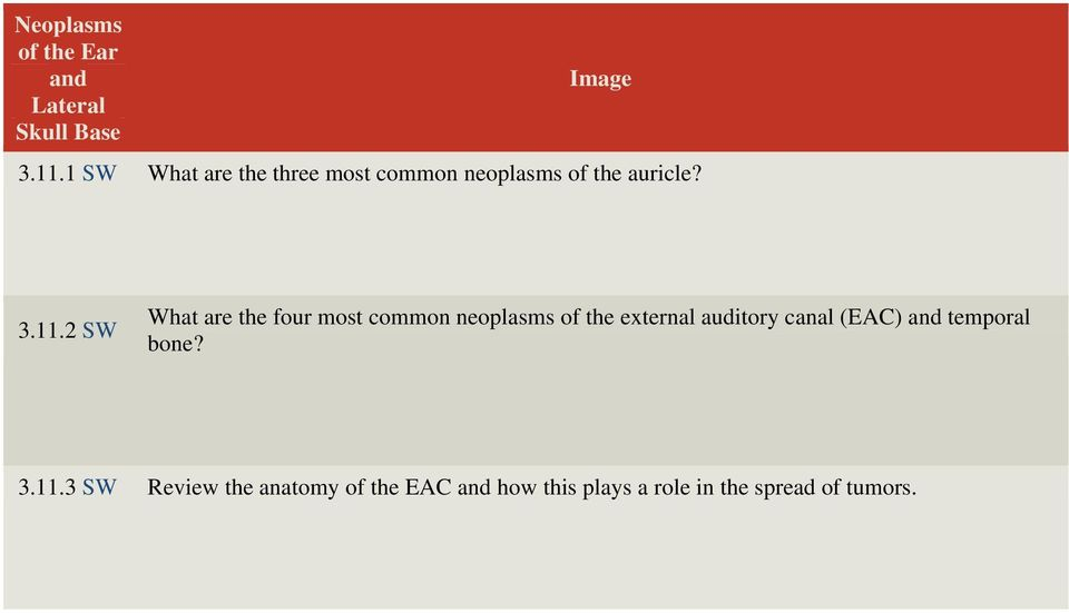 2 SW What are the four most common neoplasms of the external auditory canal