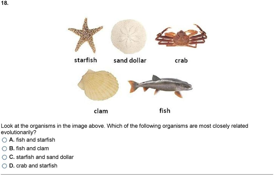 related evolutionarily? A. fish and starfish B.