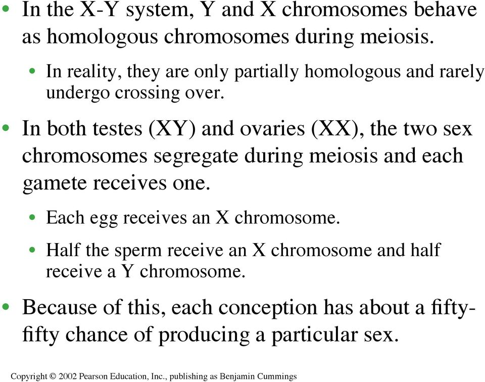 In both testes (XY) and ovaries (XX), the two sex chromosomes segregate during meiosis and each gamete receives one.