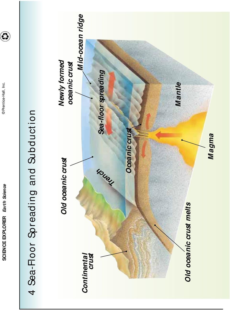 crust Sea-floor spreading Mid-ocean ridge Trench