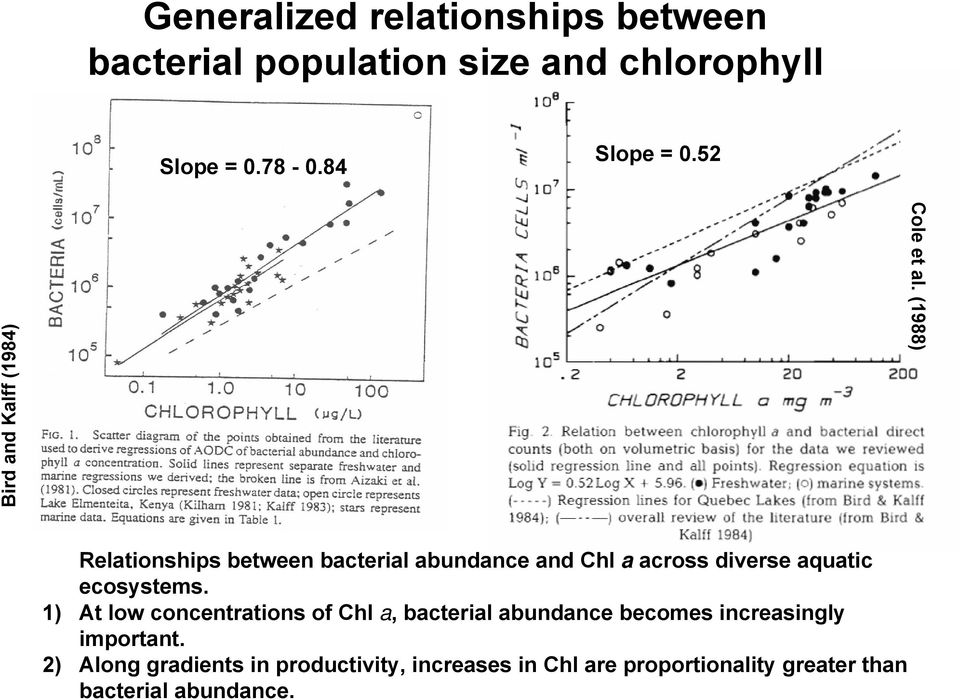 (1988) Relationships between bacterial abundance and Chl a across diverse aquatic ecosystems.