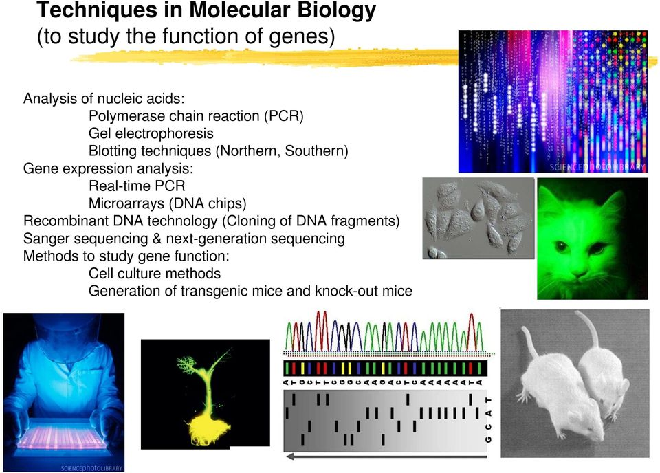 chips) Recombinant DNA technology (Cloning of DNA fragments) Sanger sequencing & next-generation sequencing Methods to