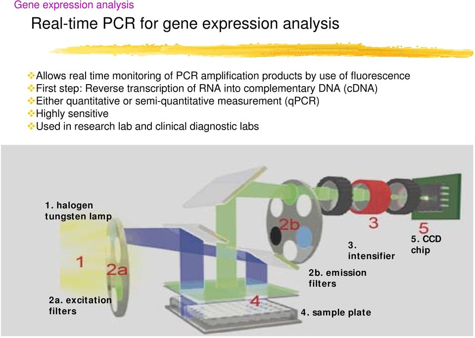 (cdna) Either quantitative or semi-quantitative measurement (qpcr) Highly sensitive Used in research lab and