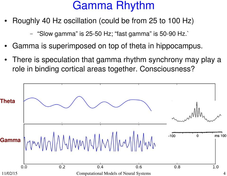 ` Gamma is superimposed on top of theta in hippocampus.