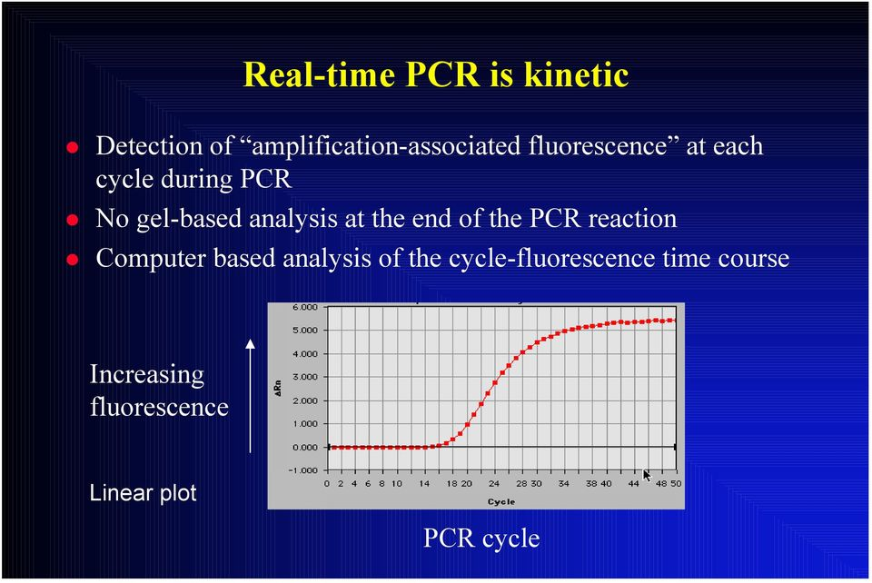 the end of the PCR reaction Computer based analysis of the