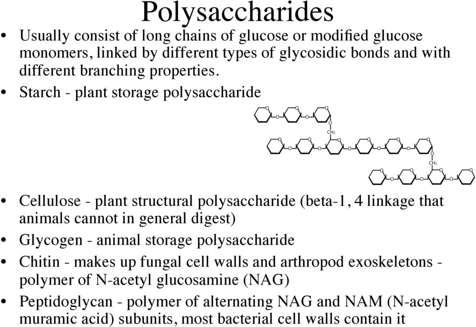 Starch - plant storage polysaccharide Cellulose - plant structural polysaccharide (beta-1, 4 linkage that animals cannot in general digest)