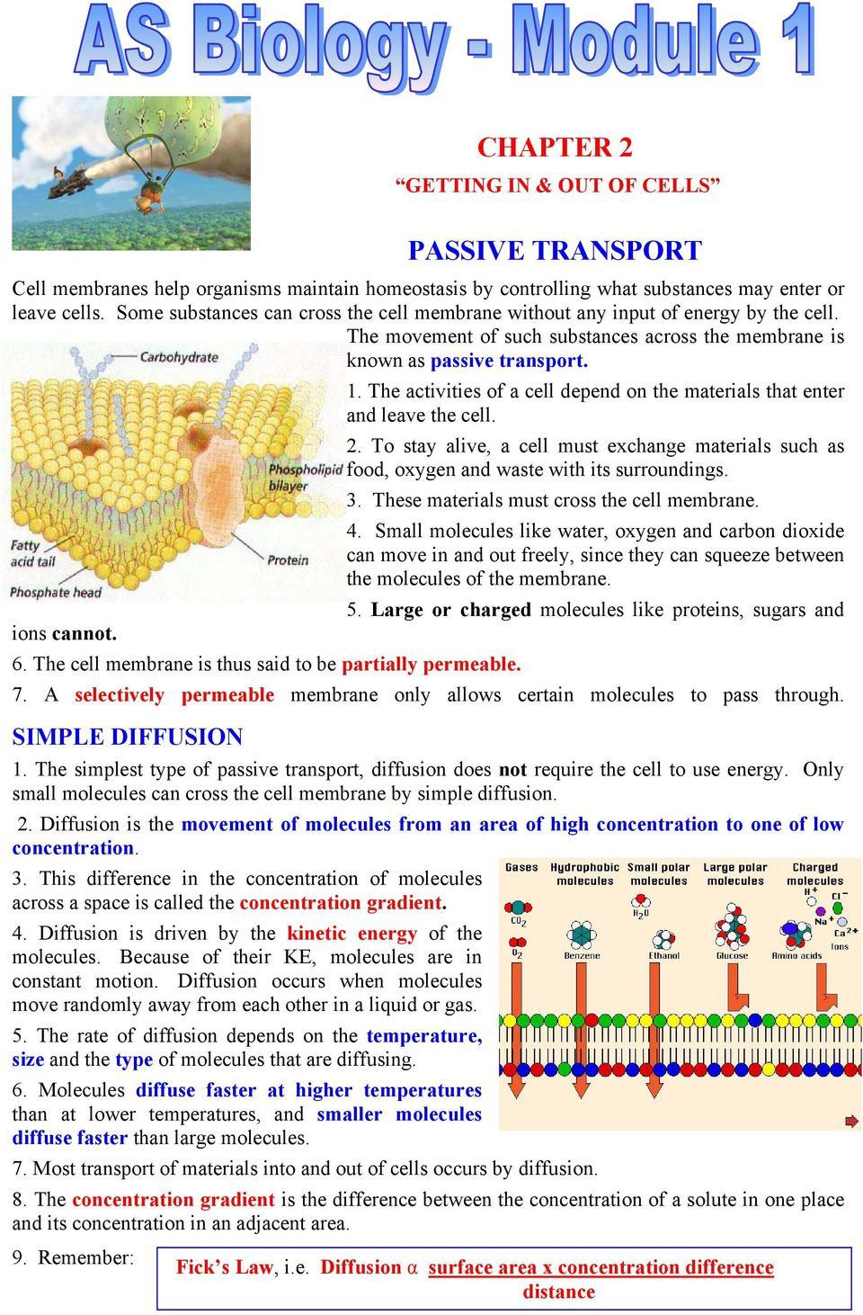 The cell membrane is thus said to be partially permeable. 1. The activities of a cell depend on the materials that enter and leave the cell. 2.