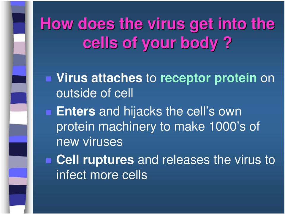 and hijacks the cell s own protein machinery to make 1000 s