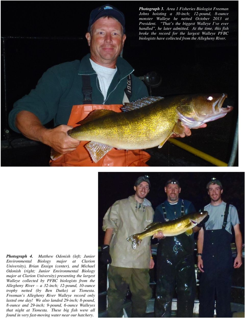 presenting the largest Walleye collected by PFBC biologists from the Allegheny River a 32-inch; 12-pound, 10-ounce trophy netted (by Ben Dutko) at Tionesta.