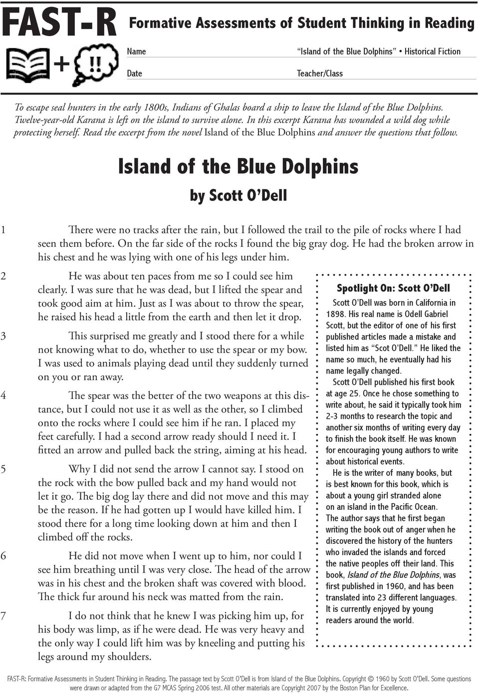 Read the excerpt from the novel Island of the Blue Dolphins and answer the questions that follow.