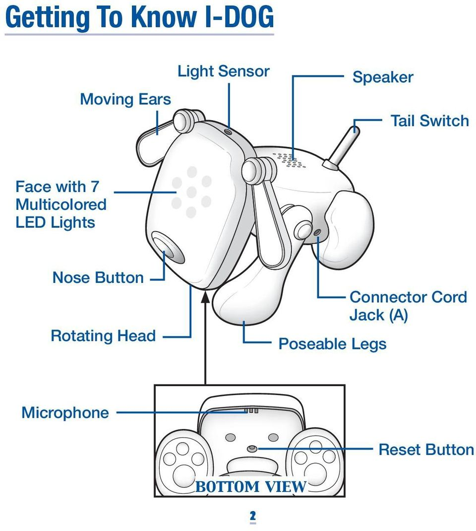 Lights Nose Button Rotating Head Poseable Legs