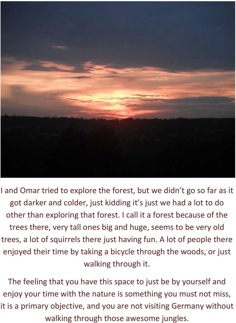 A lot of people there enjoyed their time by taking a bicycle through the woods, or just walking through it.