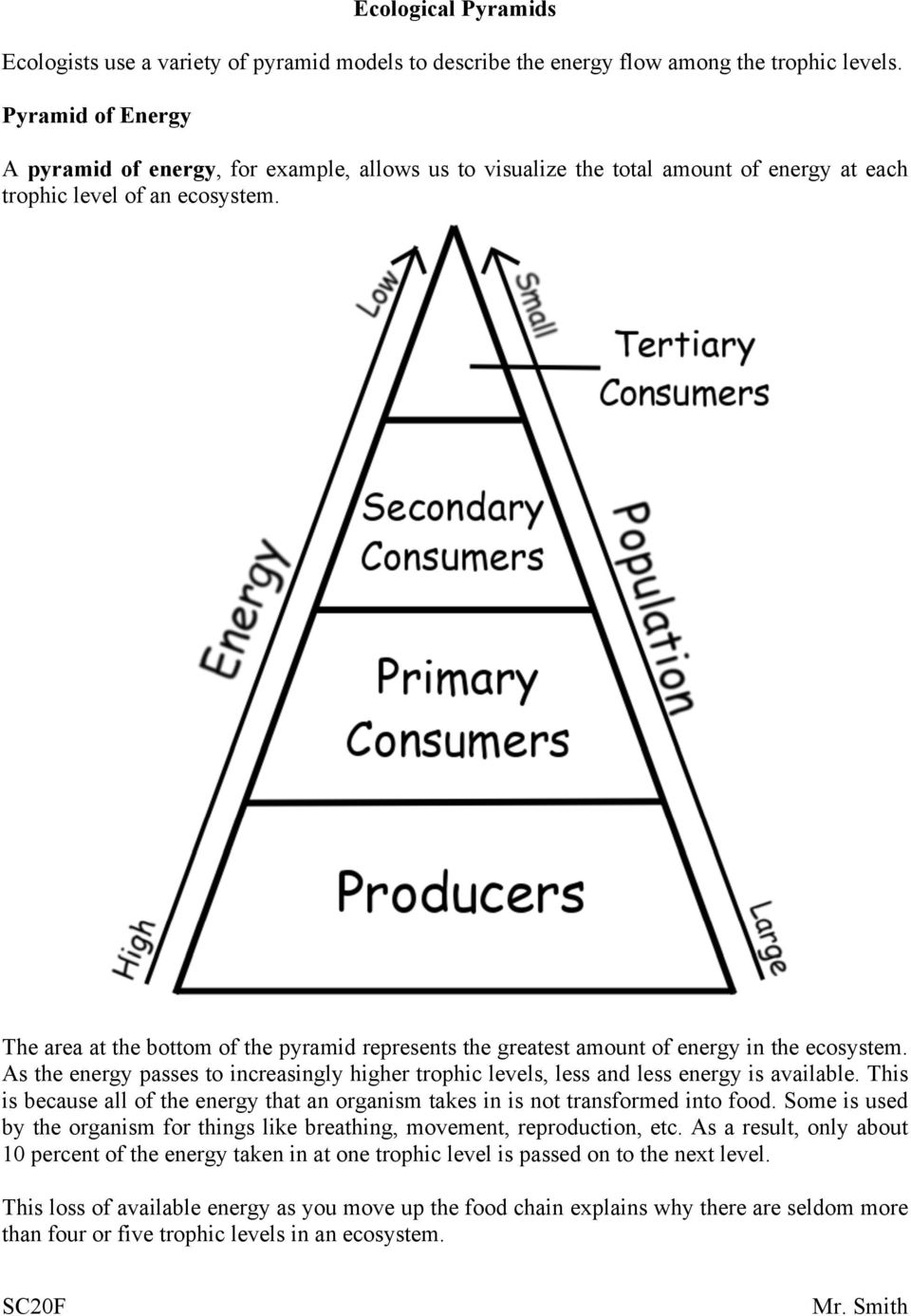 The area at the bottom of the pyramid represents the greatest amount of energy in the ecosystem. As the energy passes to increasingly higher trophic levels, less and less energy is available.