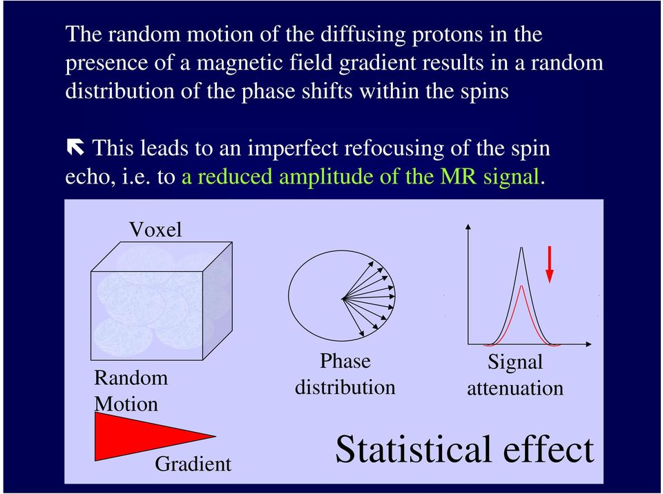 leads to an imperfect refocusing of the spin echo, i.e. to a reduced amplitude of the MR signal.