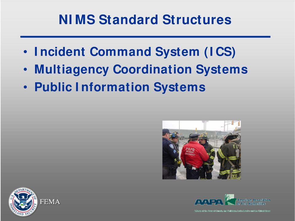 (ICS) Multiagency