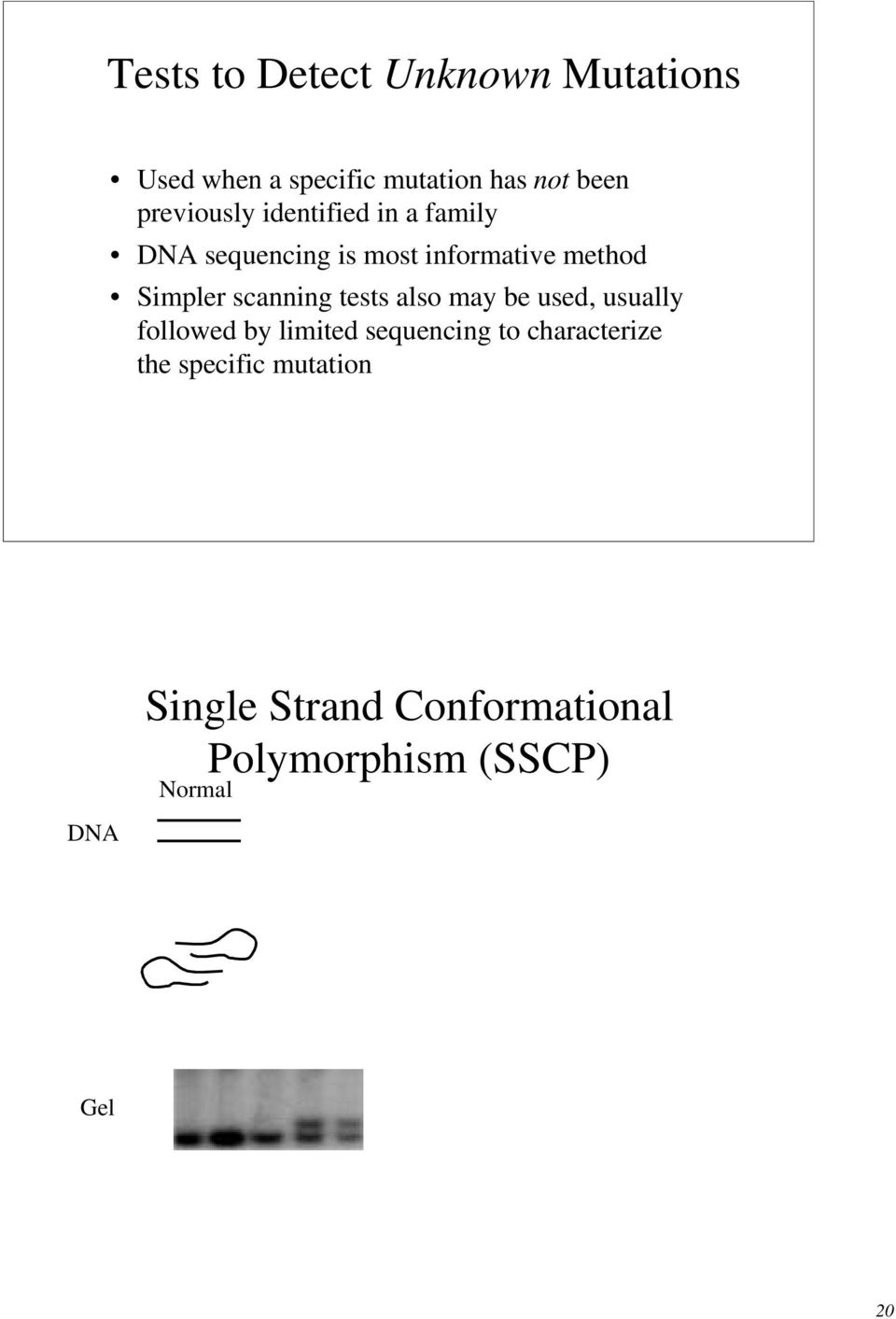characterize the specific mutation DNA Single Strand onformational Polymorphism (SSP) Normal Mutated DNA is denatured into