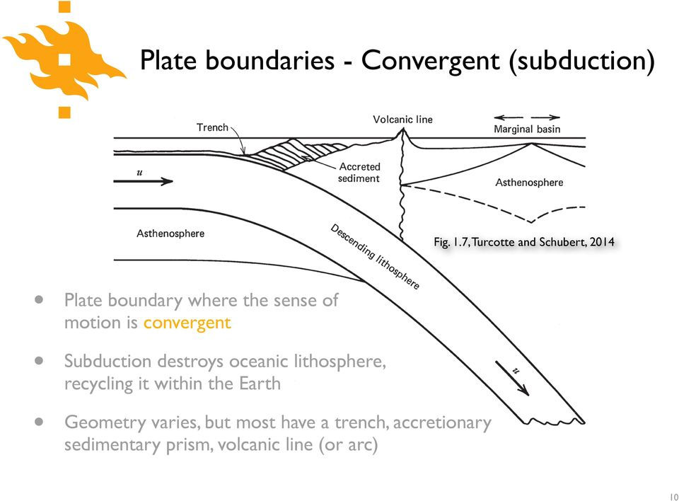 convergent Subduction destroys oceanic lithosphere, recycling it within the