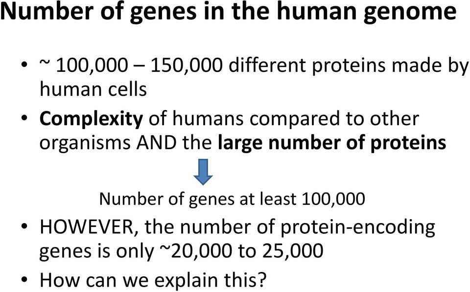 the large number of proteins Number of genes at least 100,000 HOWEVER, the