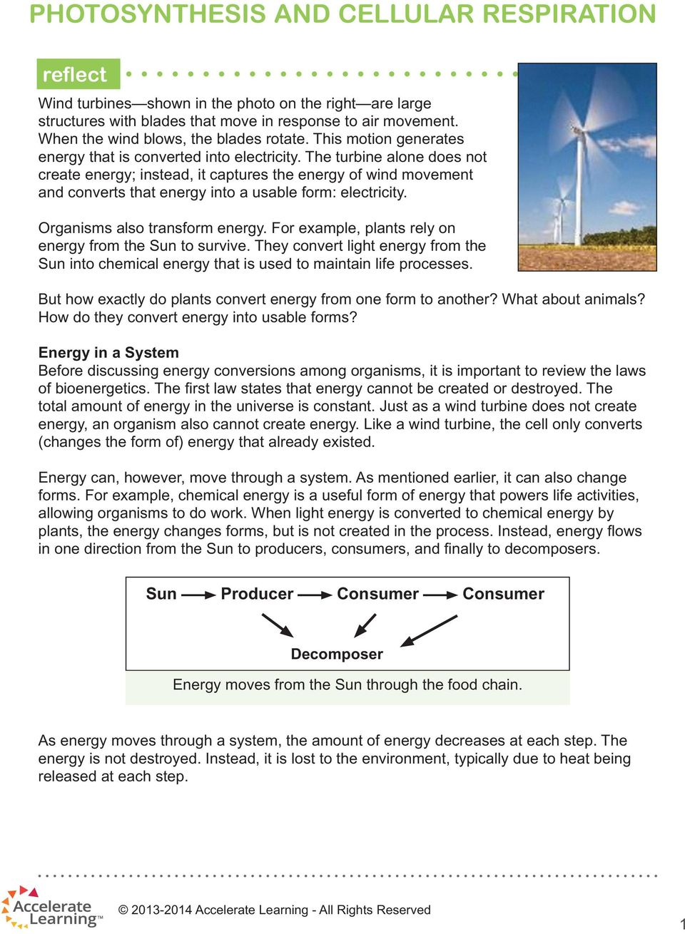 The turbine alone does not create energy; instead, it captures the energy of wind movement and converts that energy into a usable form: electricity. Organisms also transform energy.