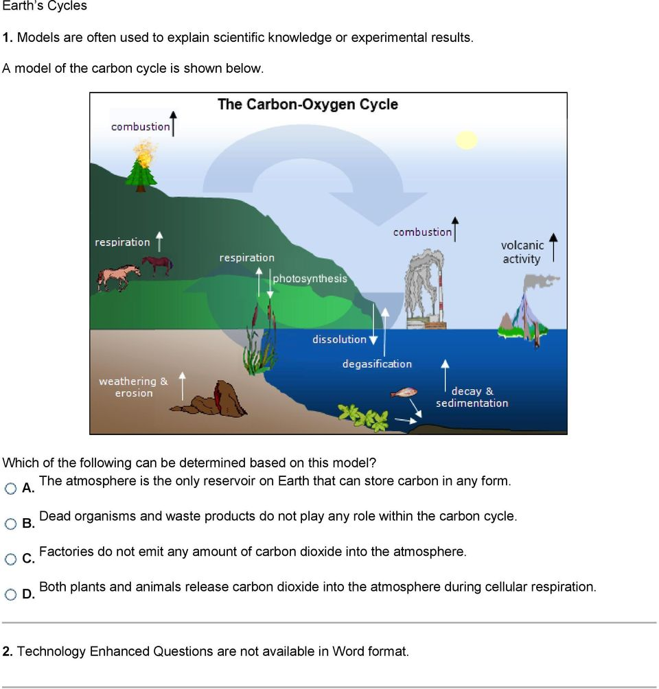 Dead organisms and waste products do not play any role within the carbon cycle. B.