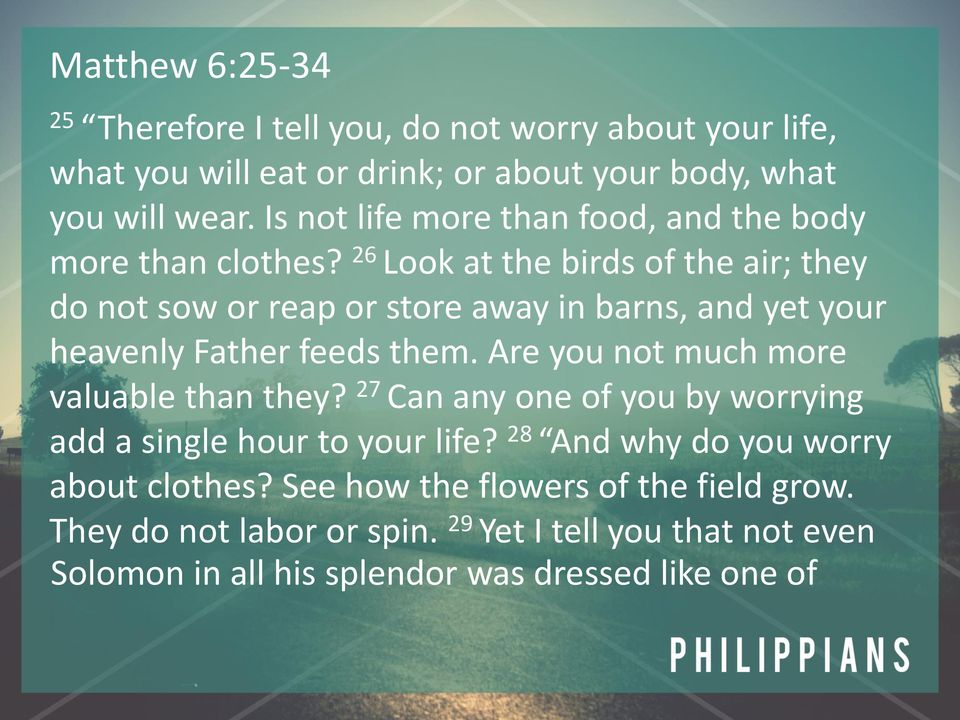 26 Look at the birds of the air; they do not sow or reap or store away in barns, and yet your heavenly Father feeds them.