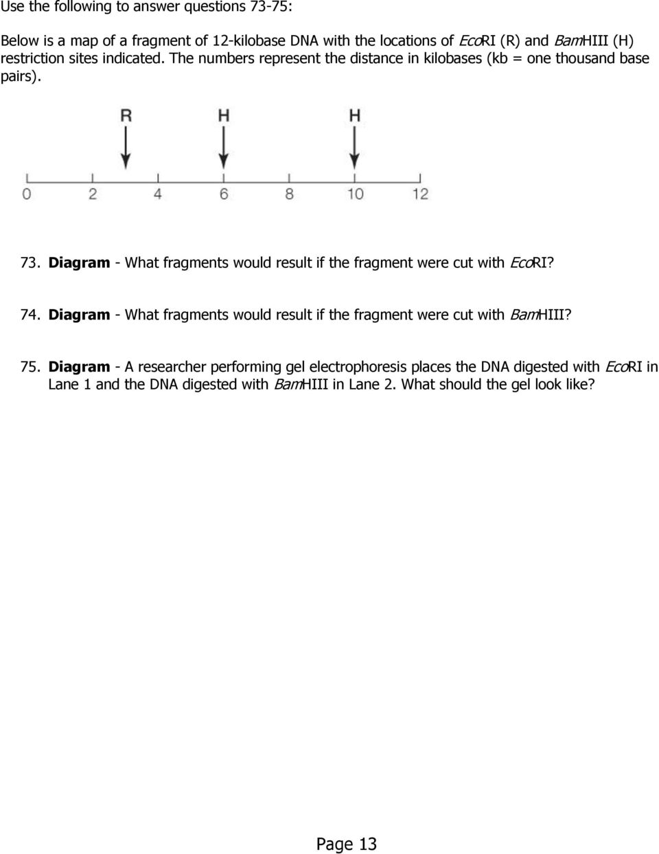 Diagram - What fragments would result if the fragment were cut with EcoRI? 74.