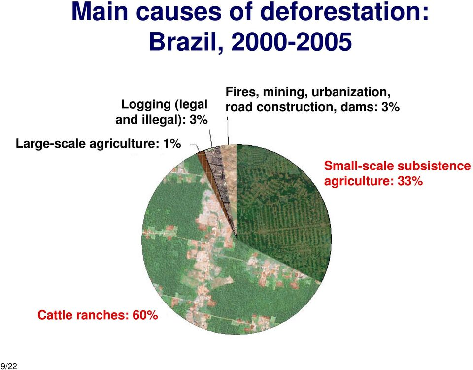 Fires, mining, urbanization, road construction, dams: 3%