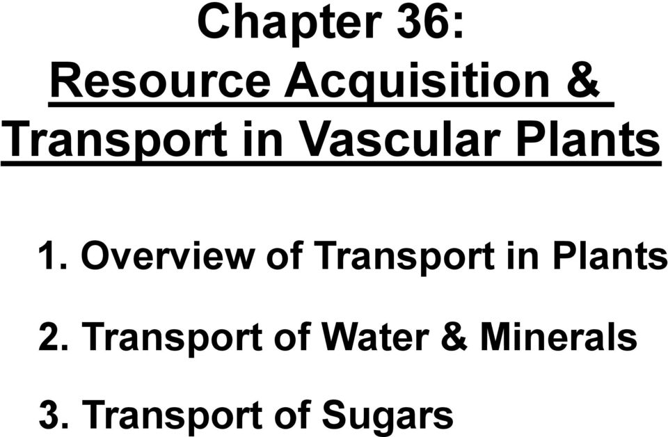 Overview of Transport in Plants 2.