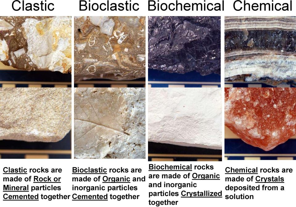 particles Cemented together Biochemical rocks are made of Organic and inorganic