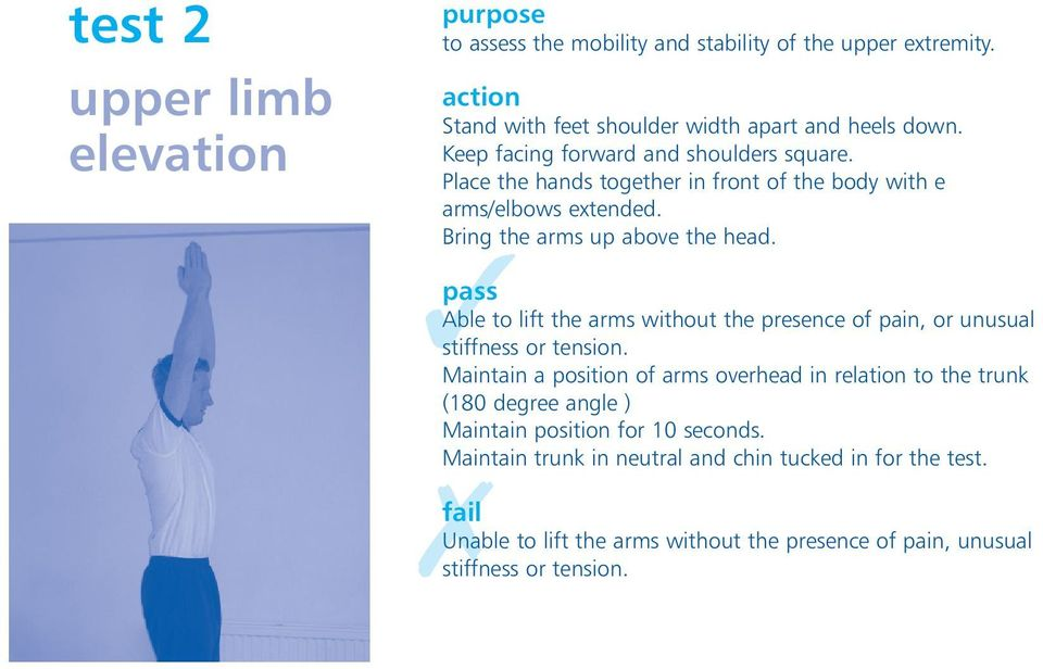 Able to lift the arms without the presence of pain, or unusual stiffness or tension.
