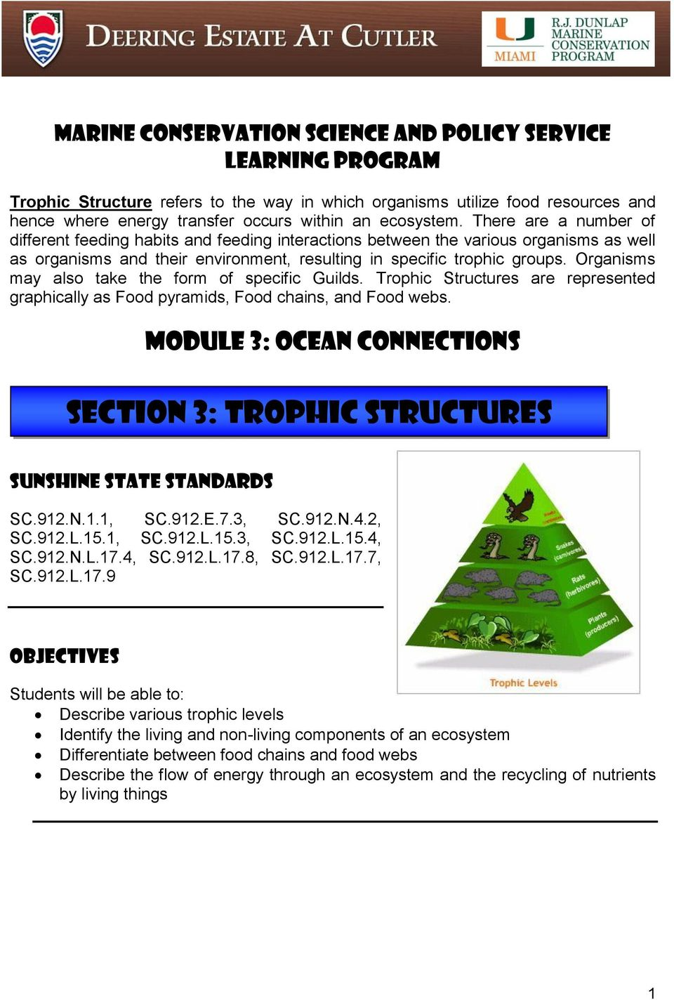 Organisms may also take the form of specific Guilds. Trophic Structures are represented graphically as Food pyramids, Food chains, and Food webs.