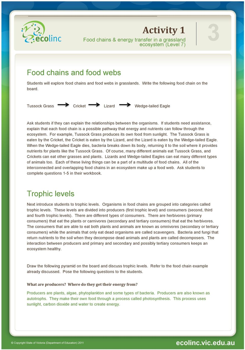 If students need assistance, explain that each food chain is a possible pathway that energy and nutrients can follow through the ecosystem.