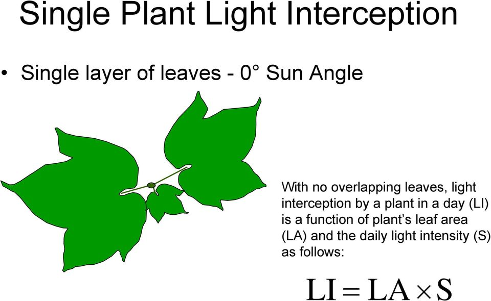 by a plant in a day (LI) is a function of plant s leaf