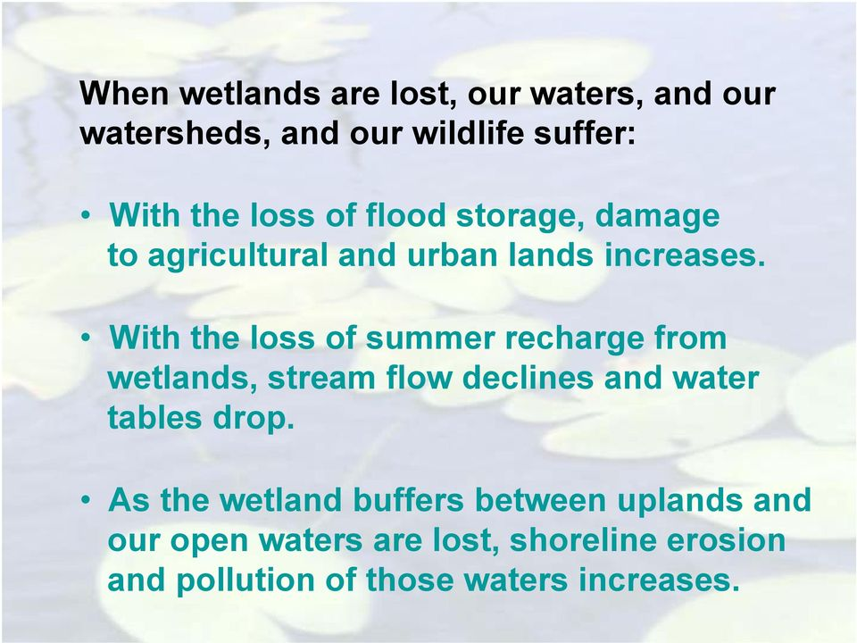 With the loss of summer recharge from wetlands, stream flow declines and water tables drop.