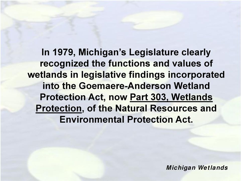 the Goemaere-Anderson Wetland Protection Act, now Part 303,