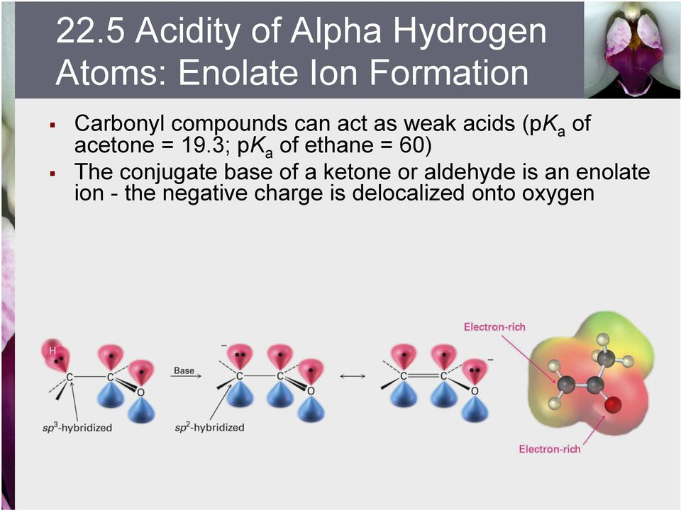 3; pk a of ethane = 60) The conjugate base of a ketone or