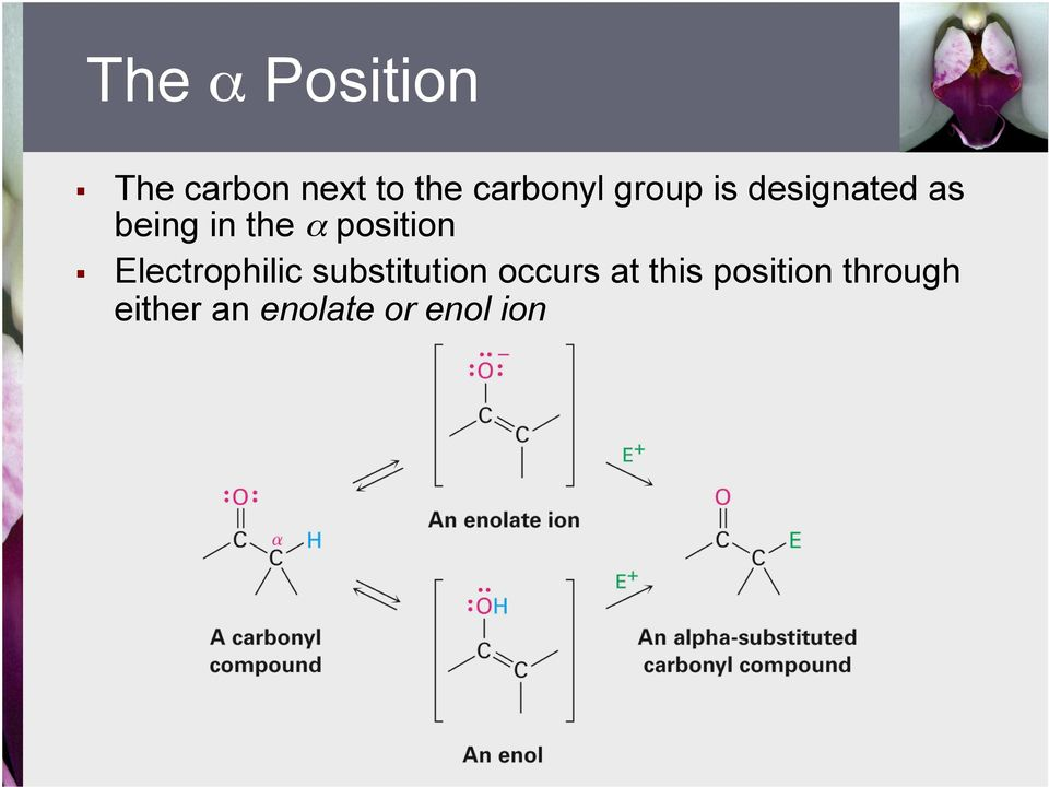 α position Electrophilic substitution occurs