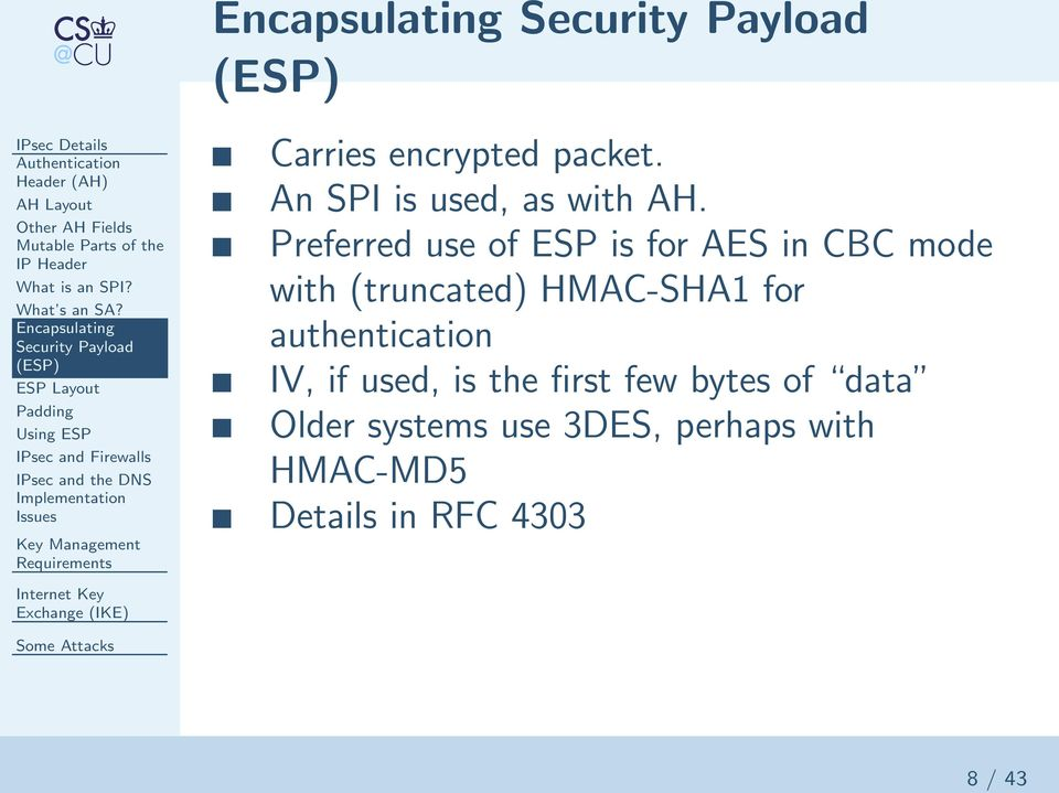 Encapsulating Security Payload (ESP) ESP Layout Padding Using ESP IPsec and Firewalls IPsec and the DNS Implementation Issues