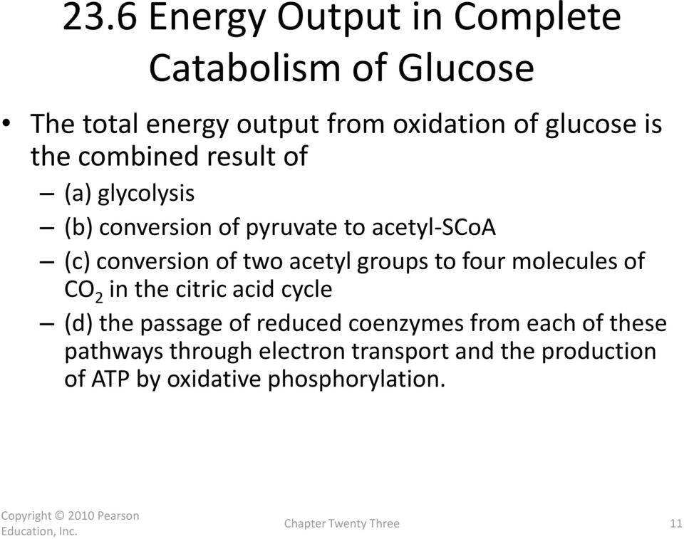 groups to four molecules of CO 2 in the citric acid cycle (d) the passage of reduced coenzymes from each of